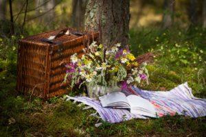 Een dagje uit, picknick