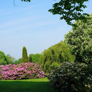 Prachtig wonen aan het park