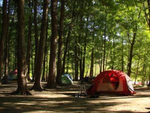 Free Willy, gesprek, kamperen, fiets-kamperen, fiets-vakantie, bevrijding